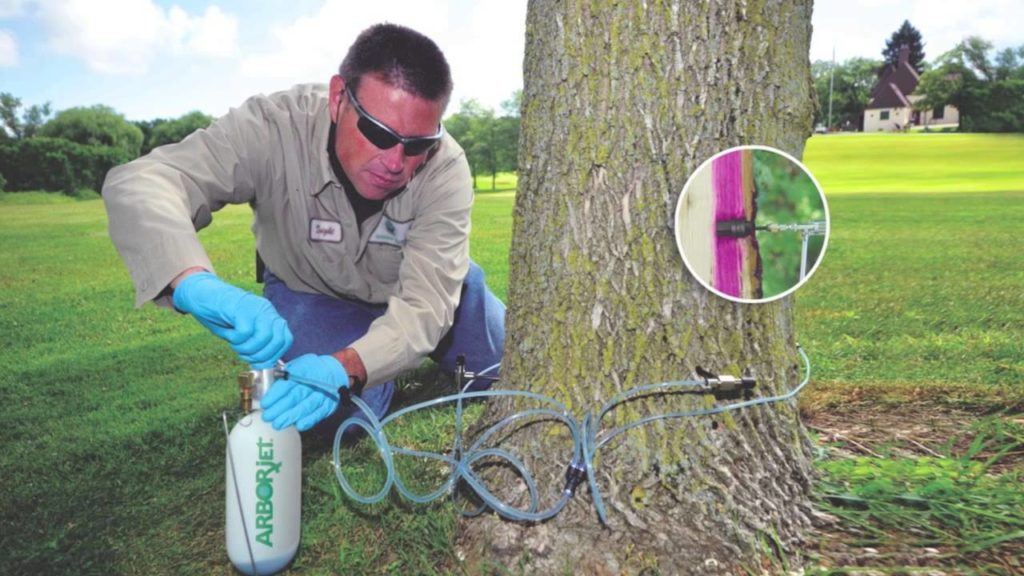 Deep Root Injection-Wellington's Best Tree Trimming and Tree Removal Services-We Offer Tree Trimming Services, Tree Removal, Tree Pruning, Tree Cutting, Residential and Commercial Tree Trimming Services, Storm Damage, Emergency Tree Removal, Land Clearing, Tree Companies, Tree Care Service, Stump Grinding, and we're the Best Tree Trimming Company Near You Guaranteed!