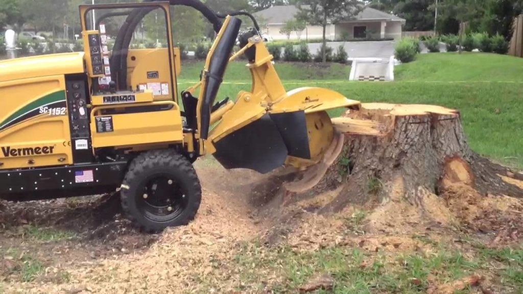 Stump Grinding-Wellington's Best Tree Trimming and Tree Removal Services-We Offer Tree Trimming Services, Tree Removal, Tree Pruning, Tree Cutting, Residential and Commercial Tree Trimming Services, Storm Damage, Emergency Tree Removal, Land Clearing, Tree Companies, Tree Care Service, Stump Grinding, and we're the Best Tree Trimming Company Near You Guaranteed!