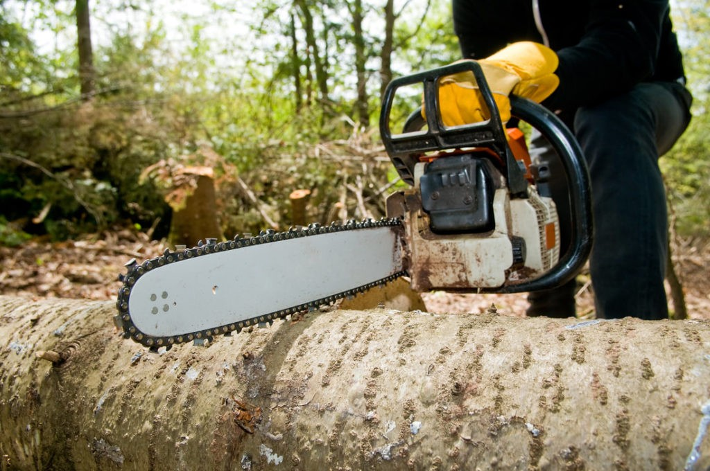 Wellington's Best Tree Trimming and Tree Removal Services-We Offer Tree Trimming Services, Tree Removal, Tree Pruning, Tree Cutting, Residential and Commercial Tree Trimming Services, Storm Damage, Emergency Tree Removal, Land Clearing, Tree Companies, Tree Care Service, Stump Grinding, and we're the Best Tree Trimming Company Near You Guaranteed!