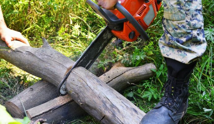 West Palm Beach-Wellington's Best Tree Trimming and Tree Removal Services-We Offer Tree Trimming Services, Tree Removal, Tree Pruning, Tree Cutting, Residential and Commercial Tree Trimming Services, Storm Damage, Emergency Tree Removal, Land Clearing, Tree Companies, Tree Care Service, Stump Grinding, and we're the Best Tree Trimming Company Near You Guaranteed!